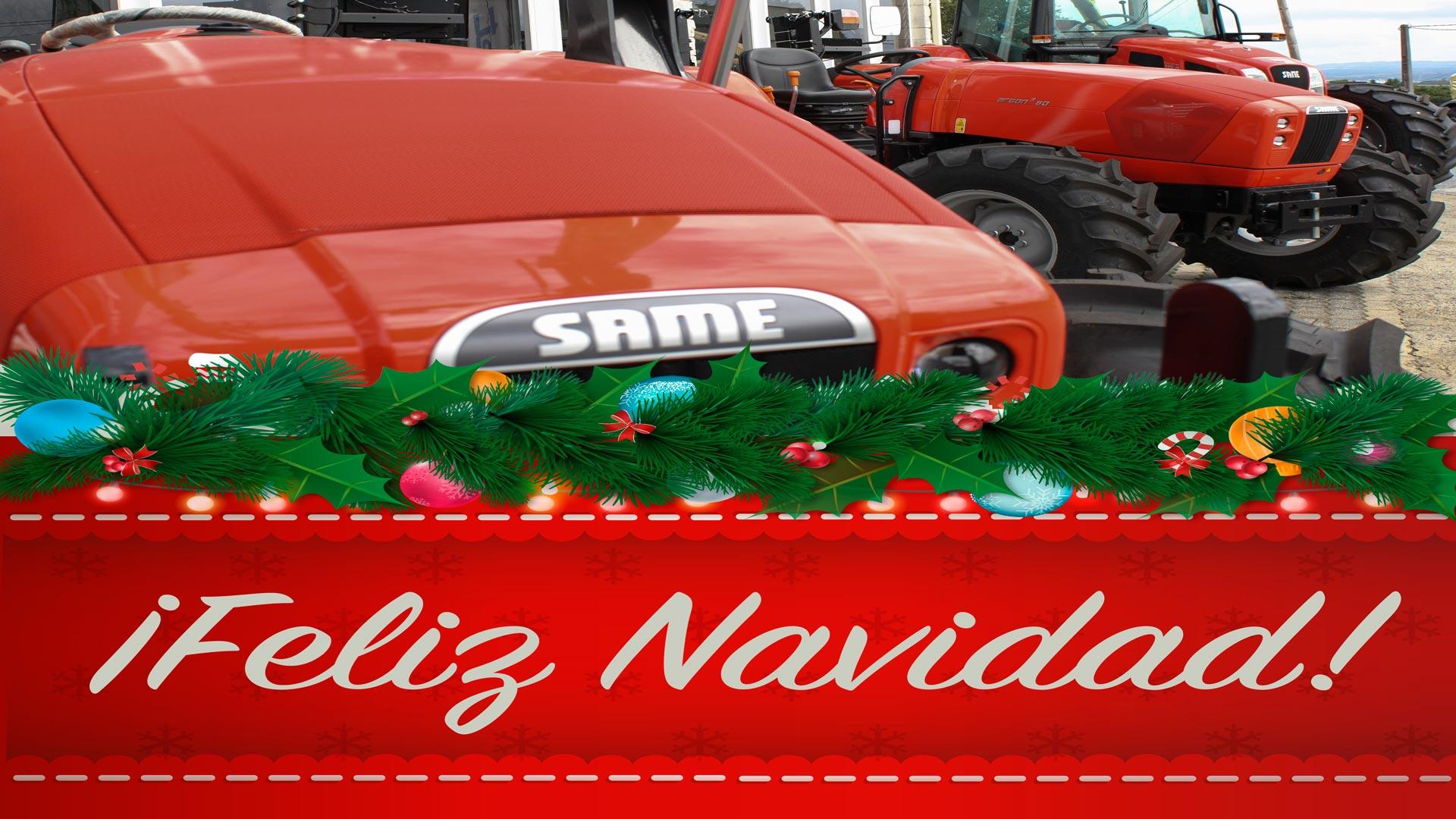 feliz navidad Millares Torrón Lugo