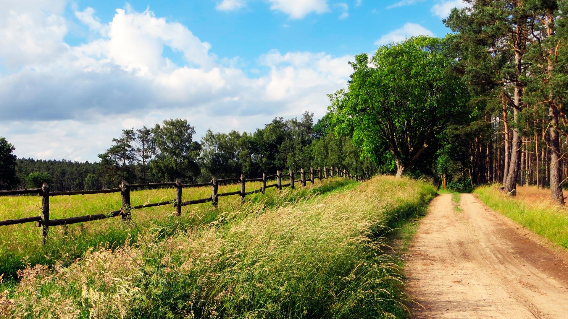 La Xunta de Galicia mejorara los accesos a las explotaciones