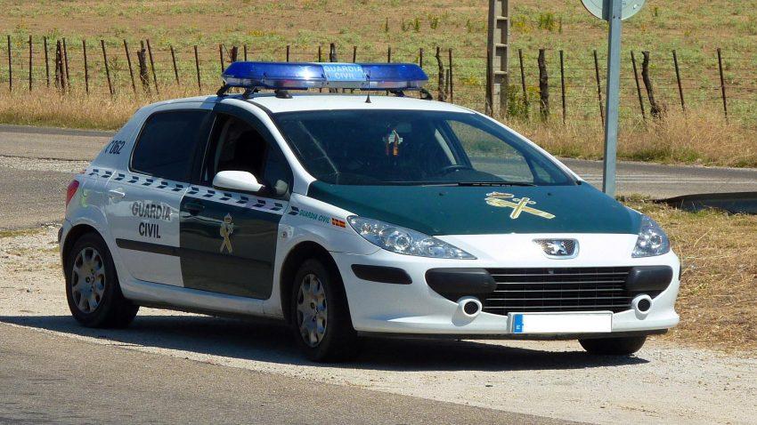 Esclarecidos 214 delitos en explotaciones agrícolas1920
