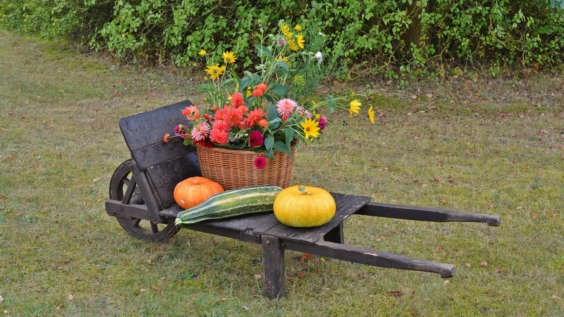 En otoño el jardin tambien necesita cuidados1920