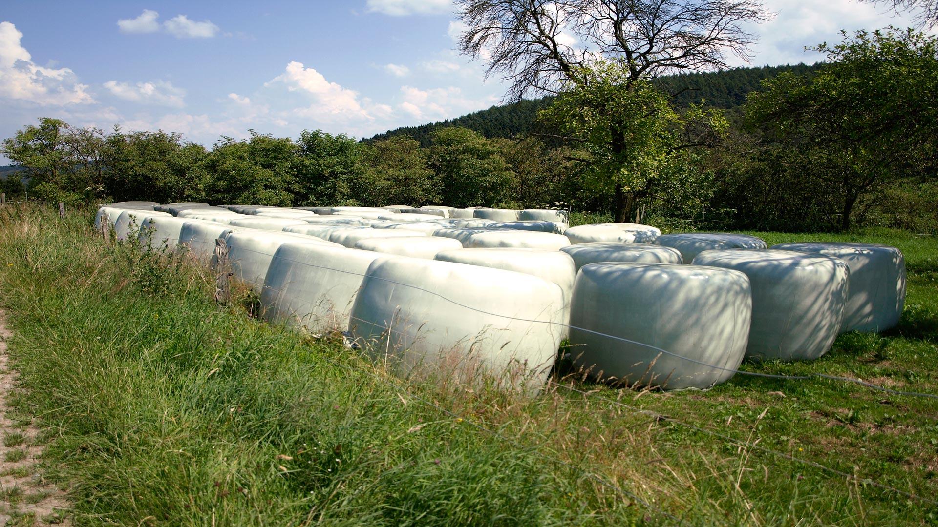 Silos de hierba cómo tener una buena conservación