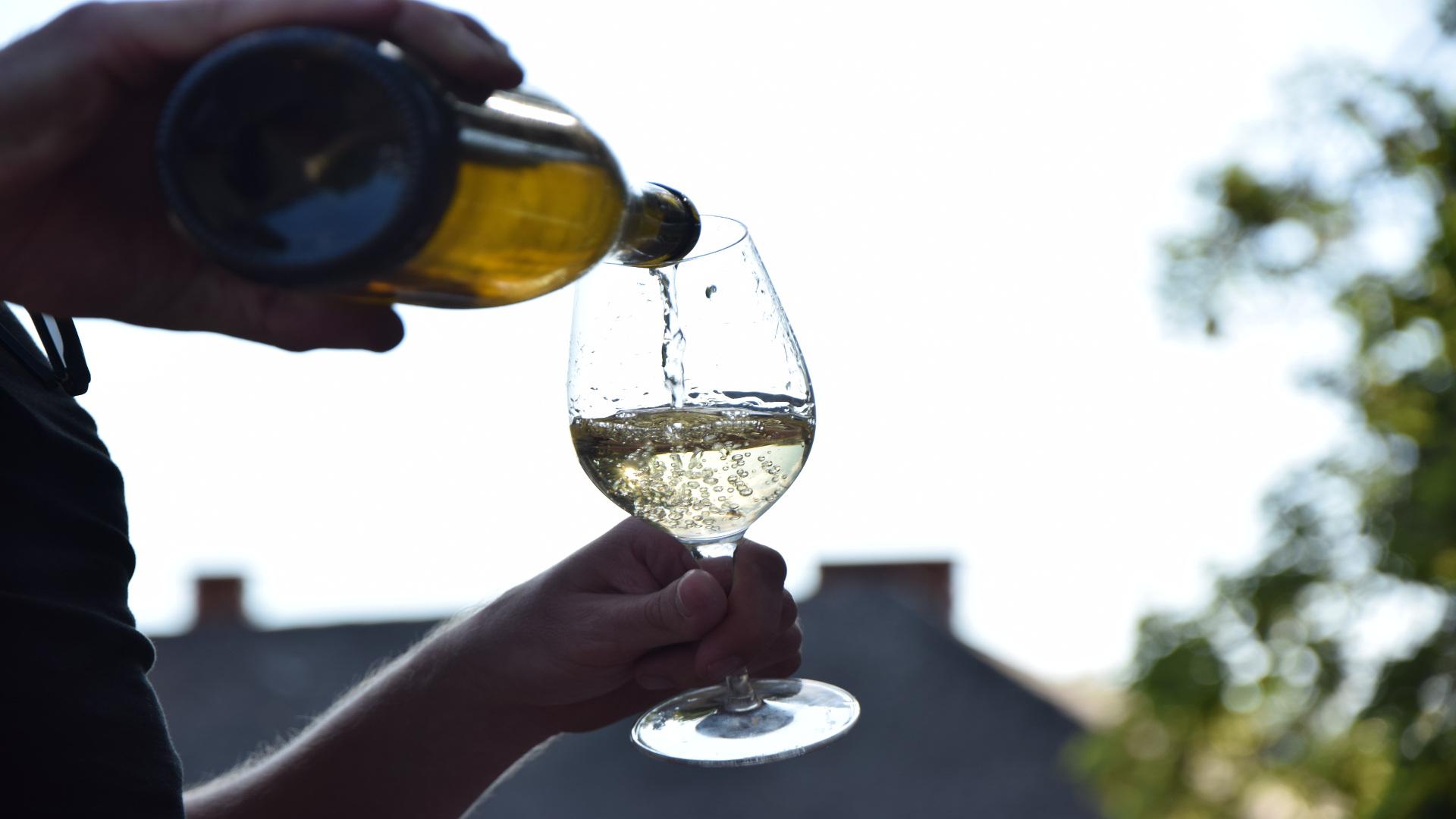 15 y 16 de Julio Feria del Vino de Valdeorras