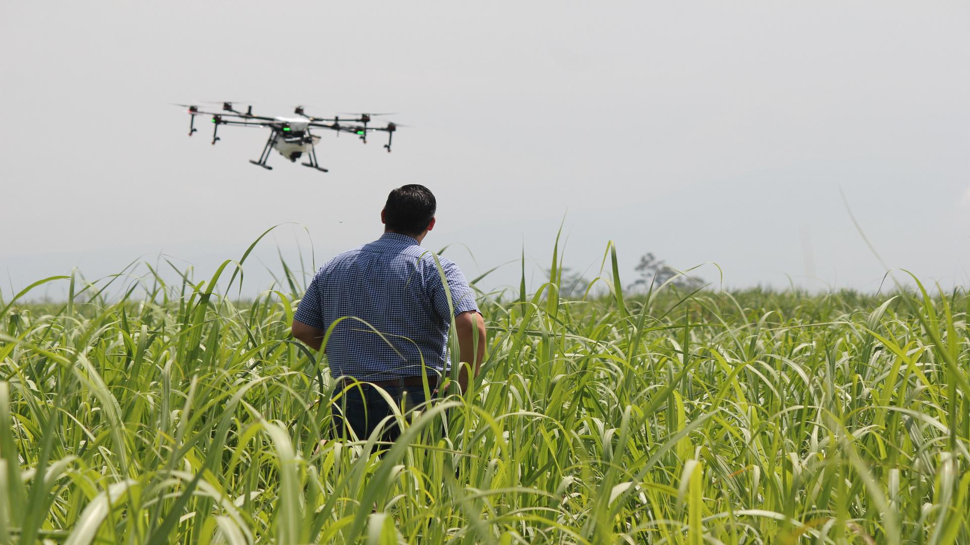 Drones para controlar el ganado y los cultivos.