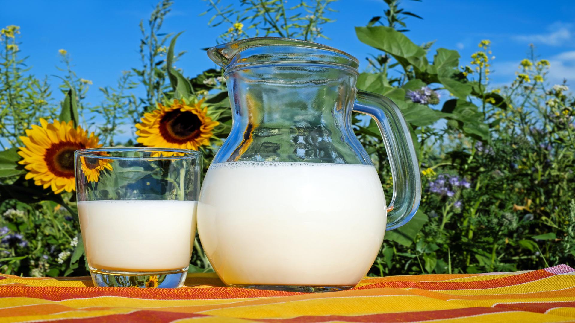 Nueva denuncia por los precios a la baja de la leche en Galicia.