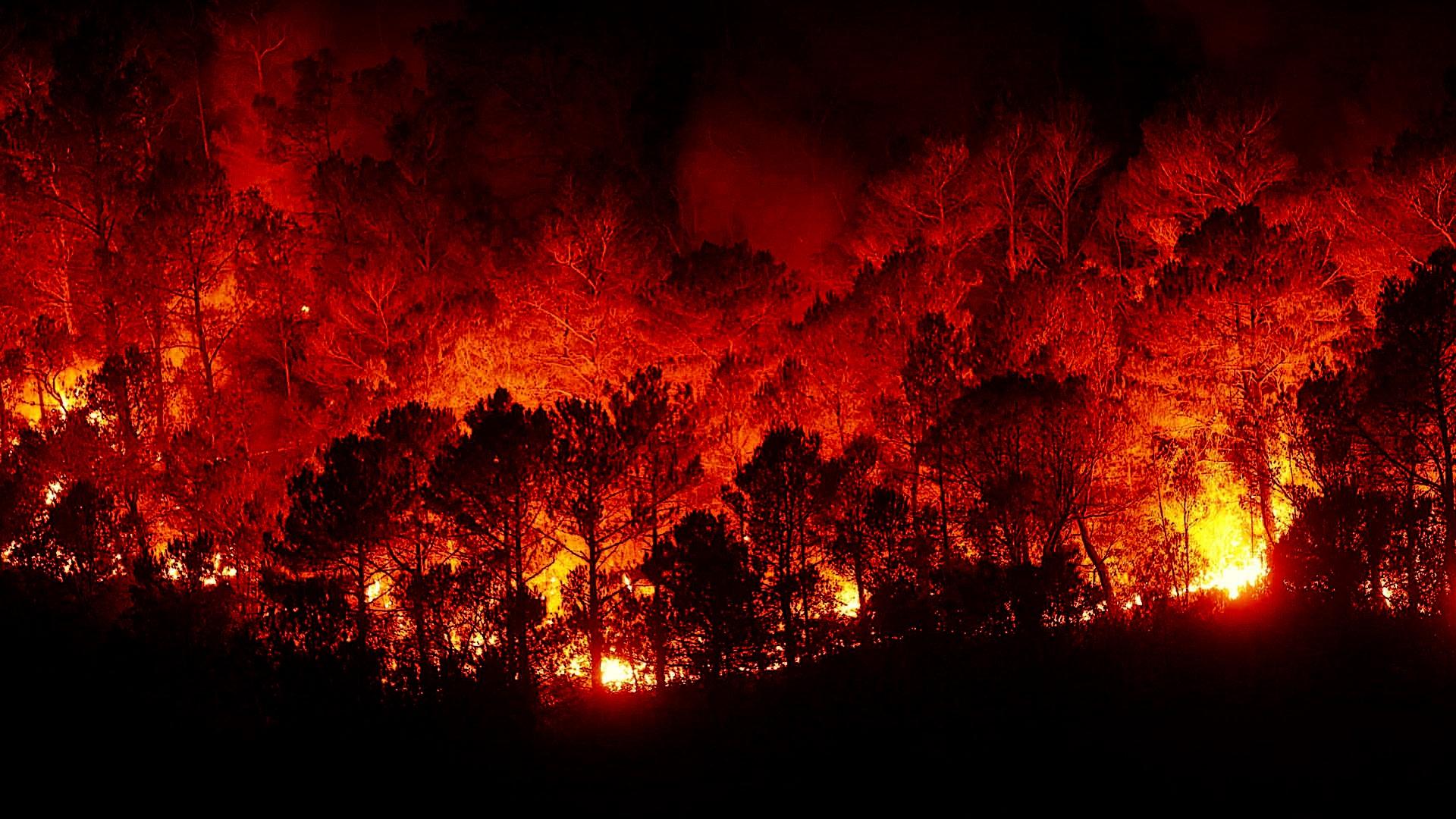 La Xunta cargara costes de extinción de incendios a los propietarios que incumplan la normativa forestal.1920
