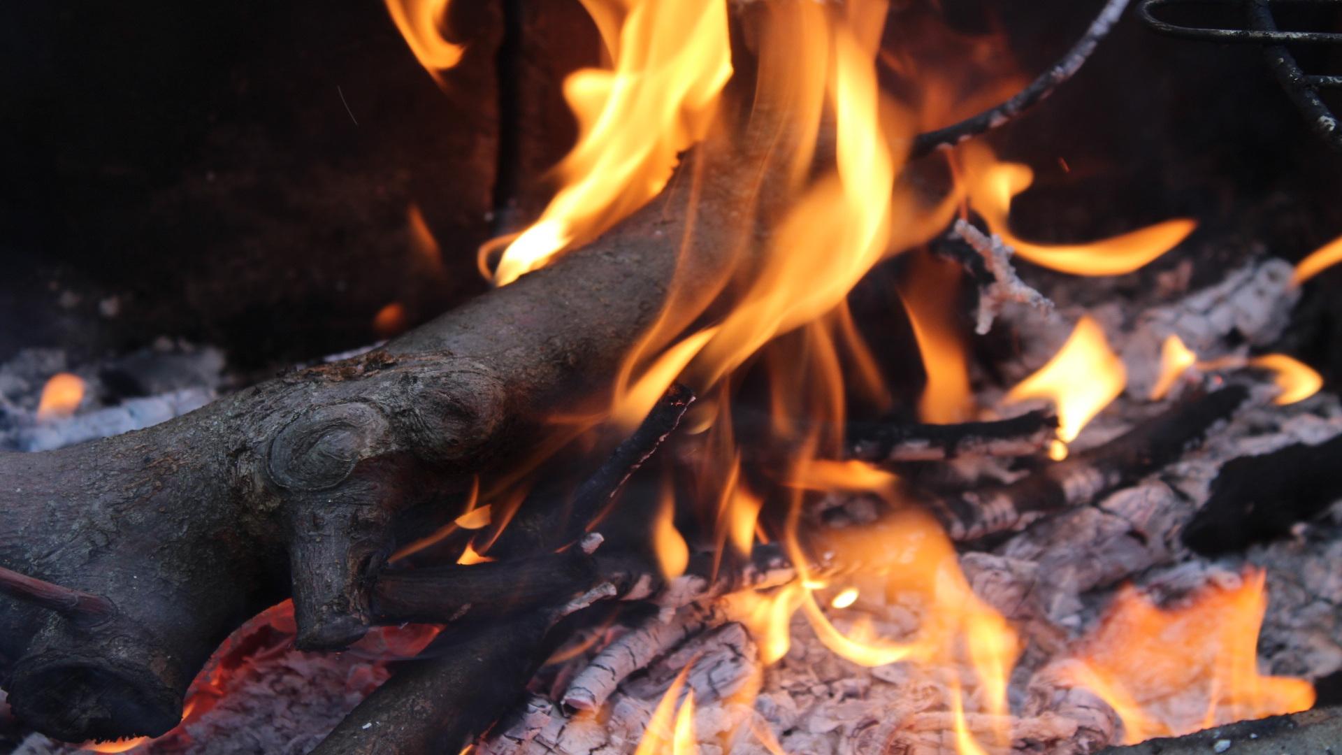 La investigacion de la ola de incendios del mes de octubre concluye que el 88 fueron intencionados.1920