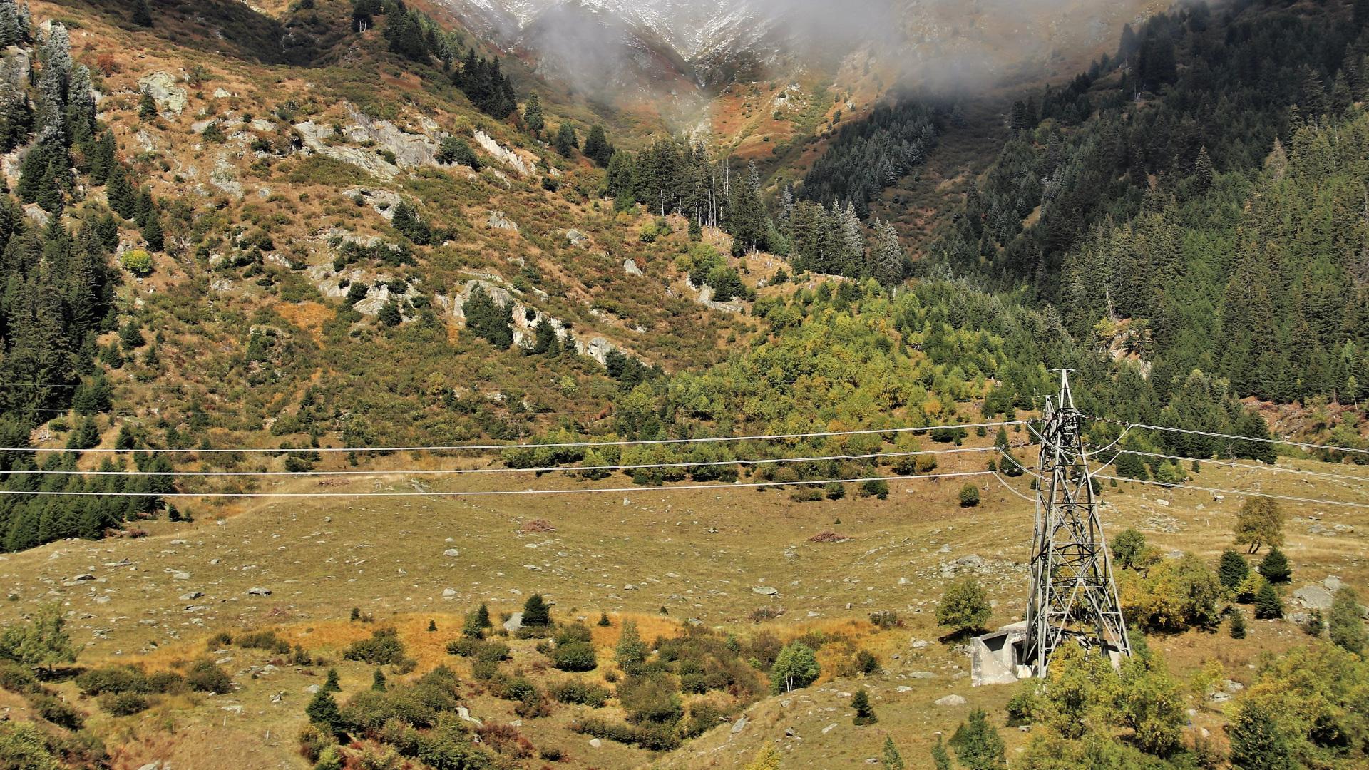 La Xunta pretende obligar a los propietarios a cortar el arbolado en los margenes de lineas electricas.1920