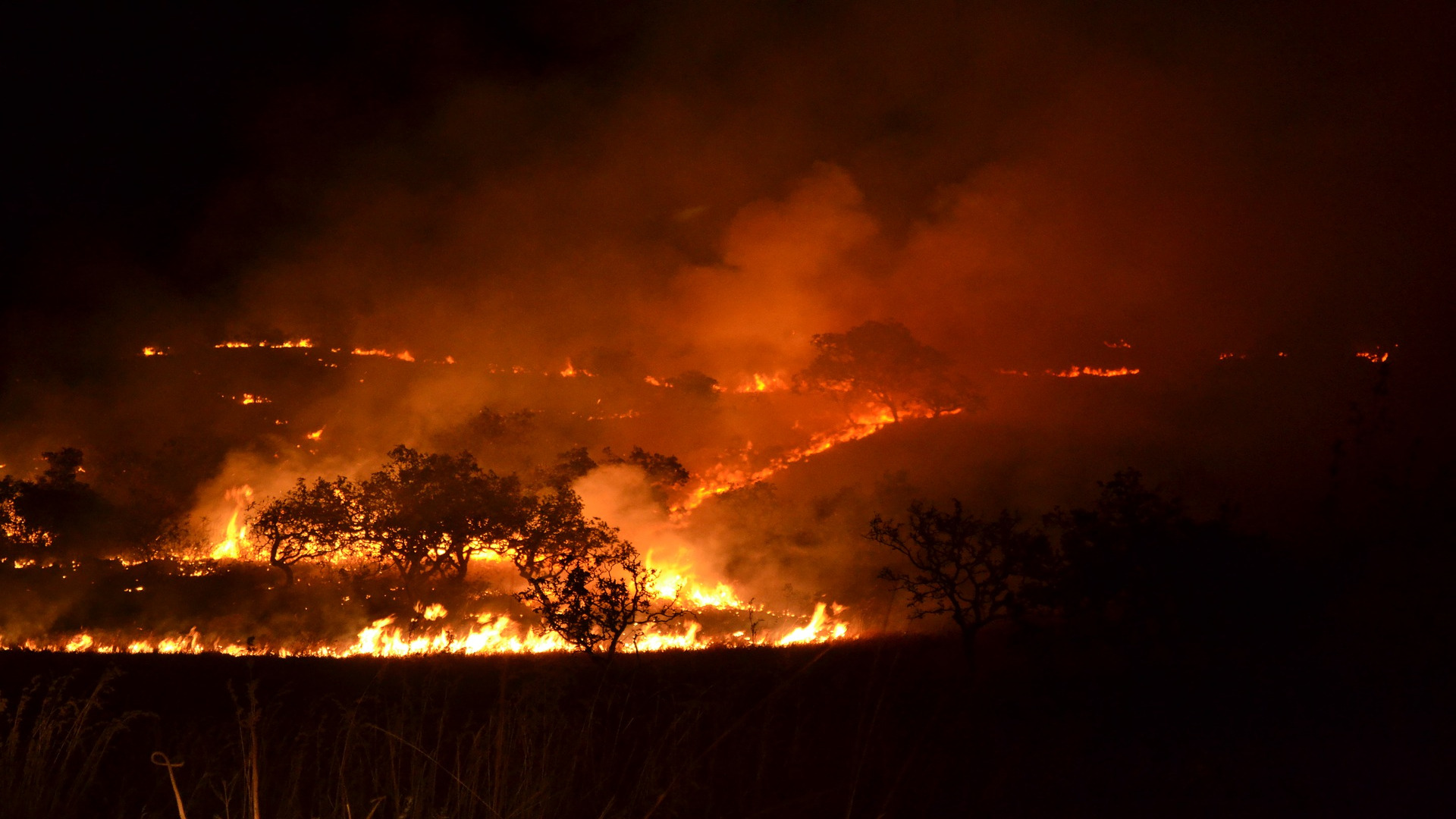 Prohibidas las quemas agricolas hasta el 30 de septiembre.1920