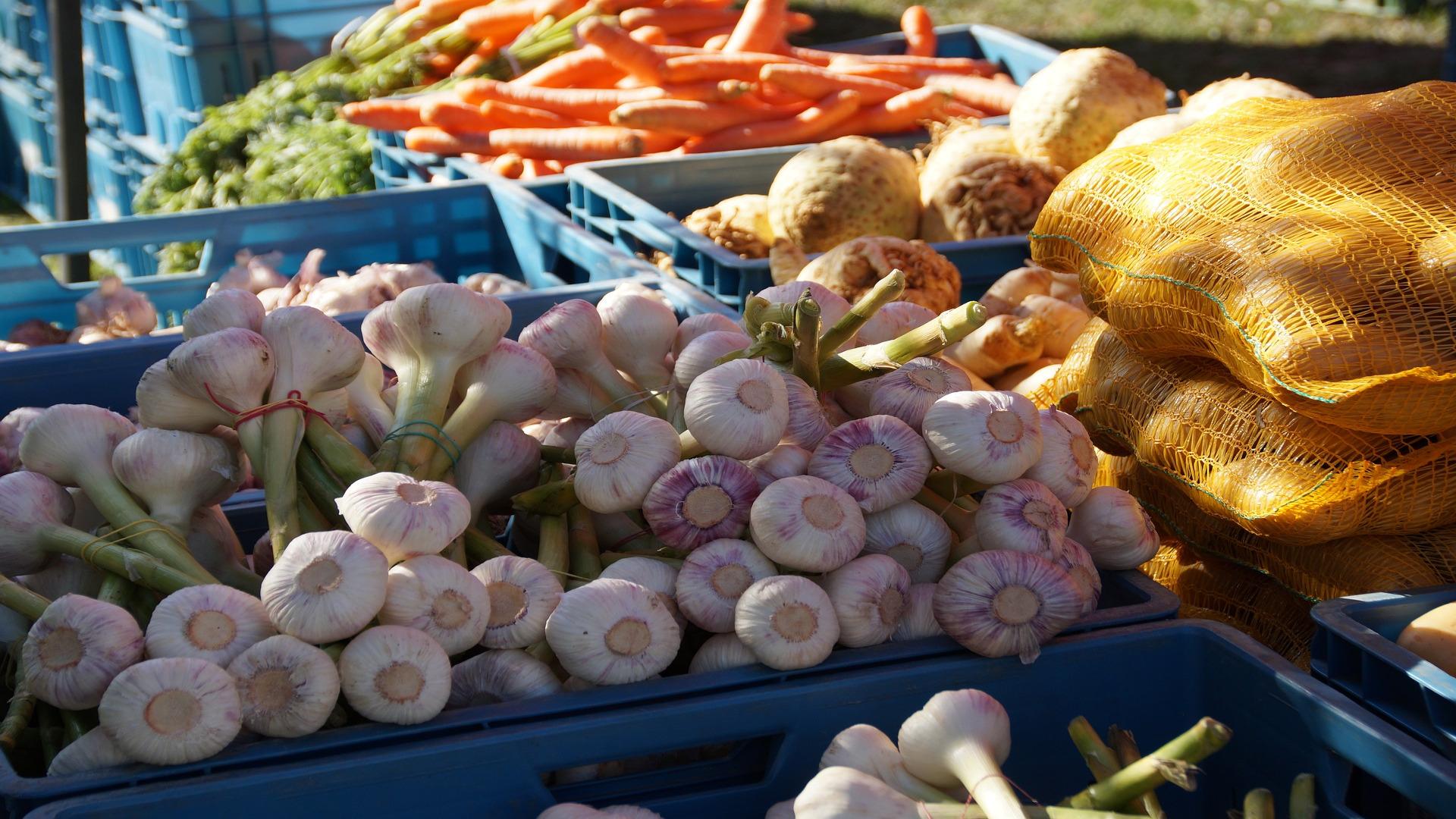 Los productores locales son basicos para garantizar el abastecimiento de alimento1920