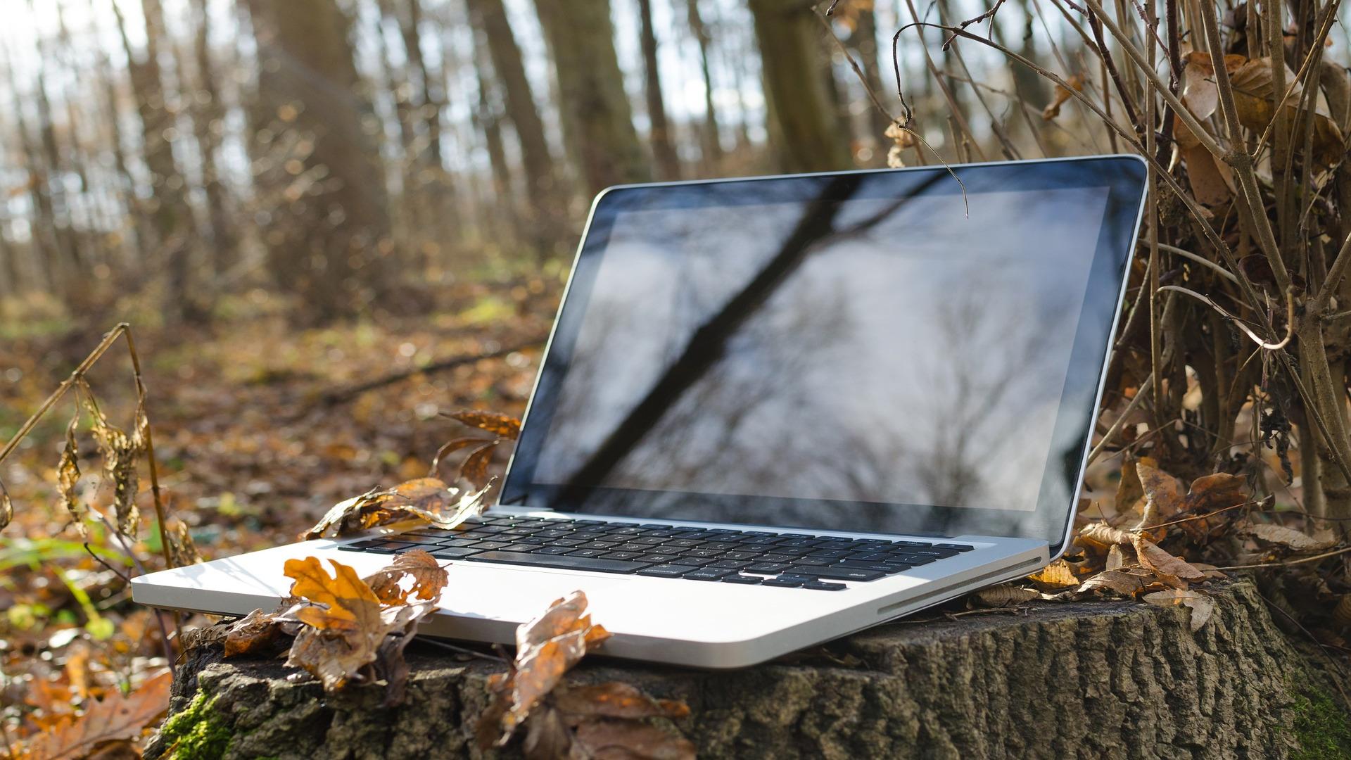 Raices la web que servira de ayuda a los jovenes que se incorporen al sector agrario y forestal1920