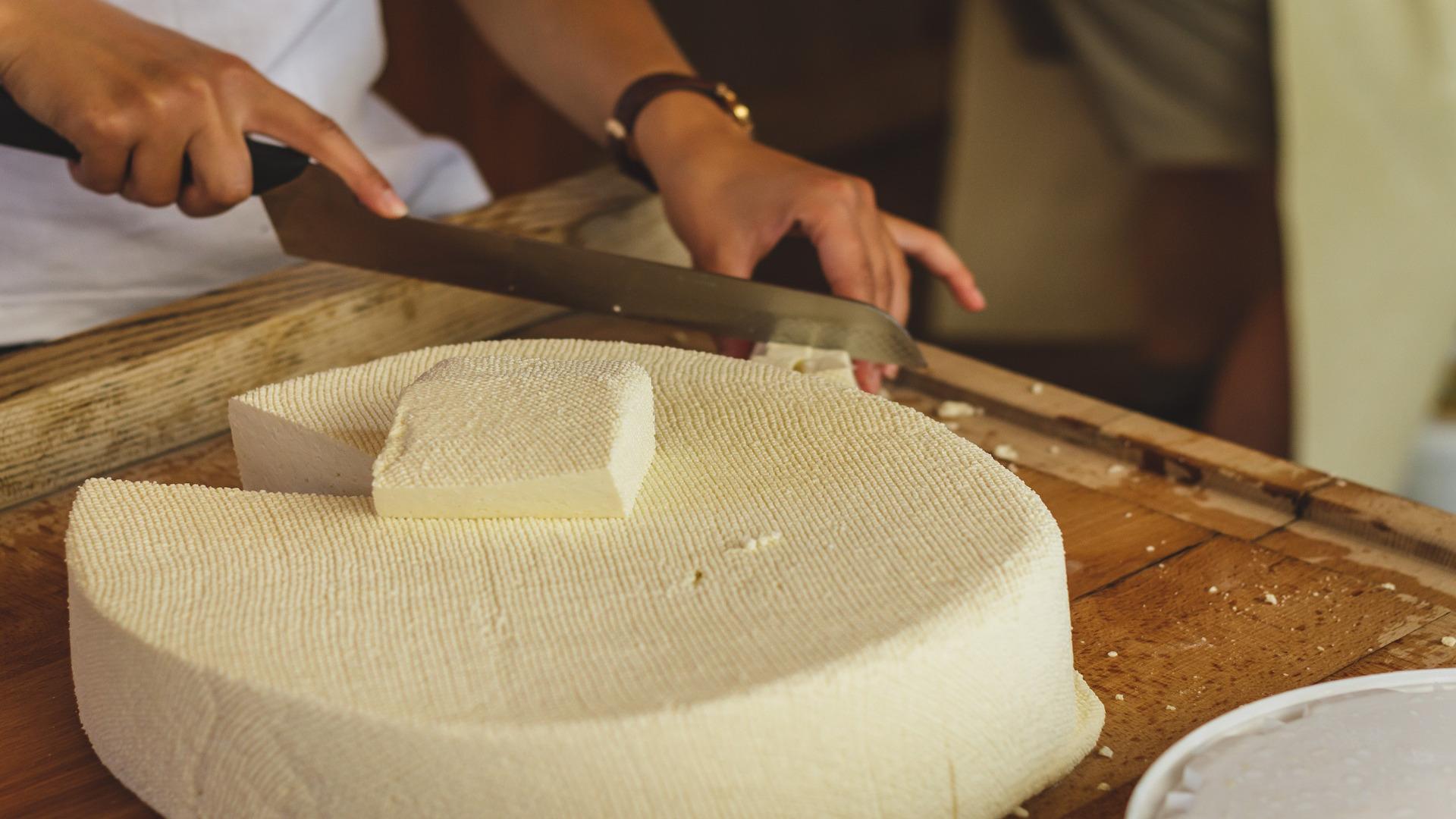 conseguir-mas-produccion-en-los-quesos-gallegos-con-sello-de-calidad-1920